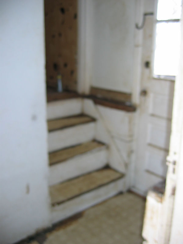 Nasty original stairwell filled with cat hair and pee!