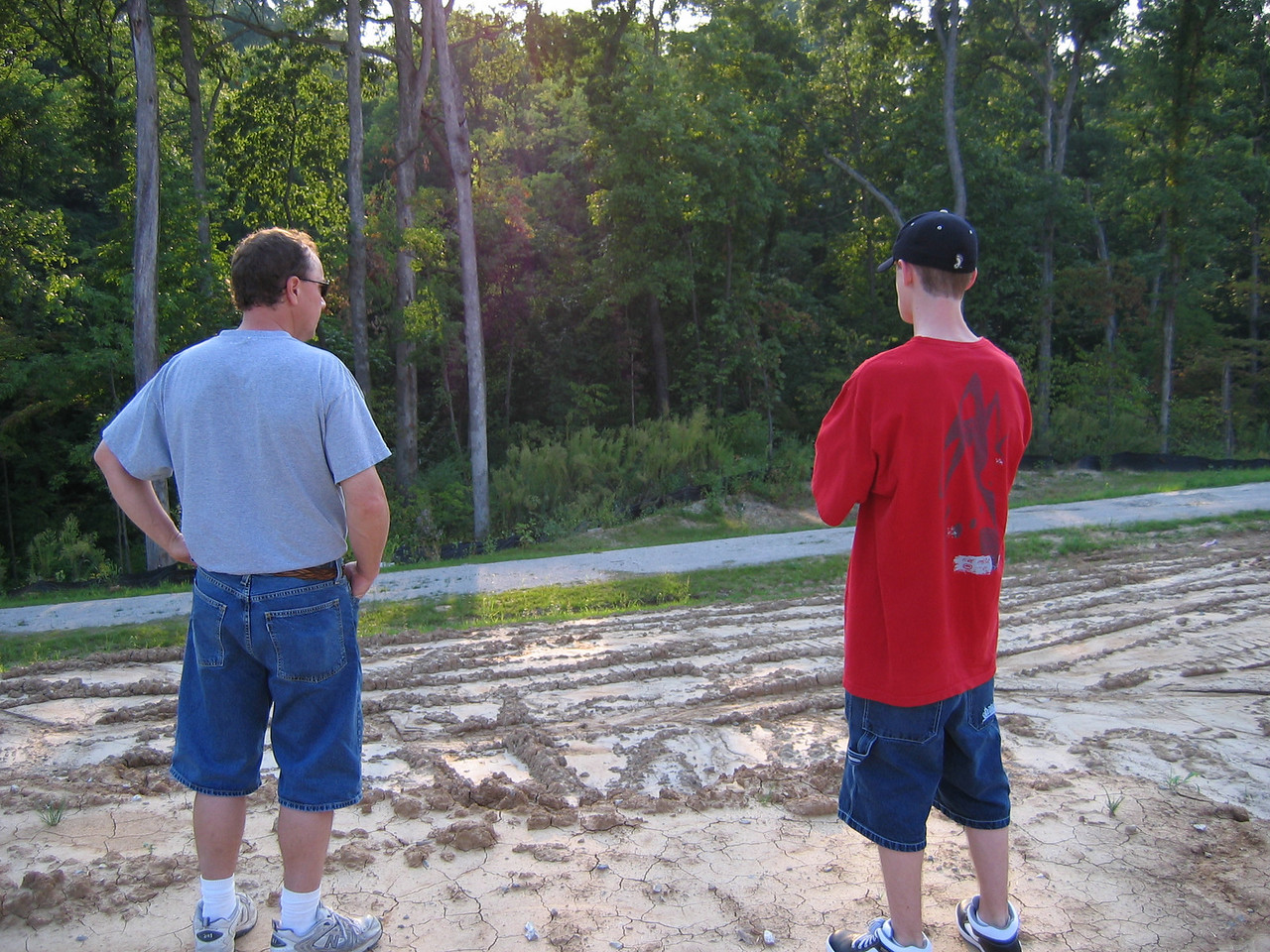 Looking at Woods from Lot