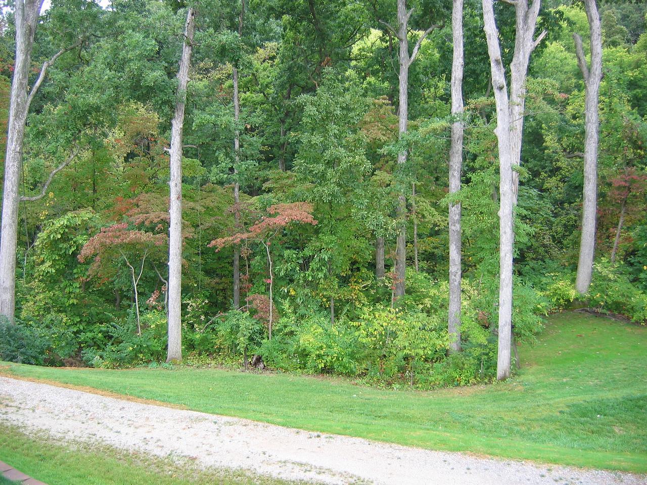 Trail/Common Ground September 23, 2006