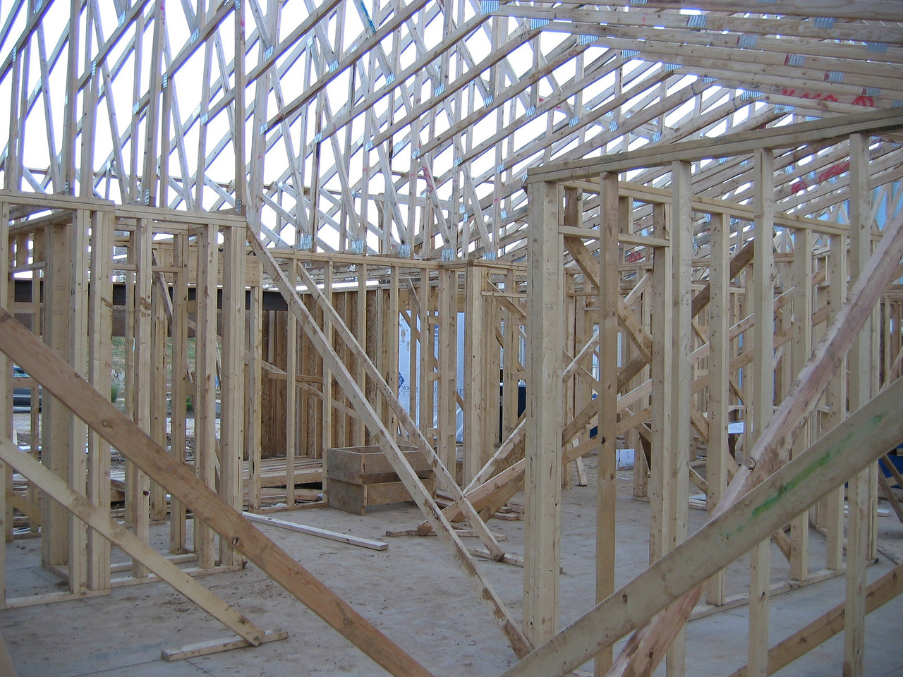 Roof Trusses from Interior October 25