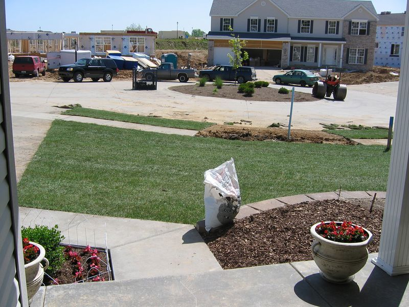 Front Yard Sodded May 4