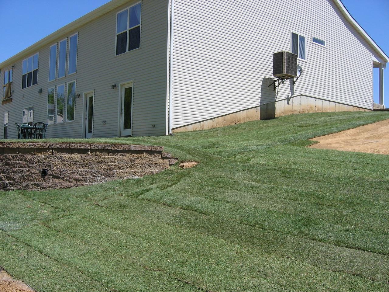 Side Yard Sodded May 4