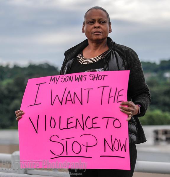 Homestead Hi Level Bridge Protest