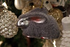 2011-11-21-190127-5D Mark II-1536