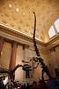 2011-11-22-123933-5D Mark II-1619