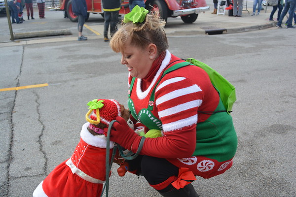 Mindy Taphorn of Moccasin adjusts the hat on her Beagle, Suzy Q, at the Reindog Pet Parade. Both owner and dog were dressed as Cindy Lou Who. Dawn Schabbing photo
