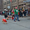 Participants of the Reindog Pet Parade are shown. Dawn Schabbing photo
