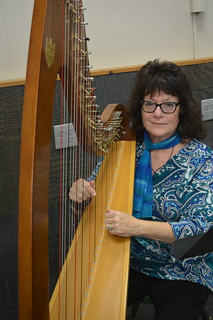 Michele Carruthers of Sigel sits at her harp to play background music during the Hometown Christmas event. Dawn Schabbing photo