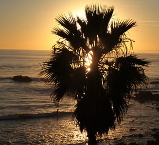 DP 2 Laguna Beach