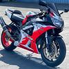 Honda CBR929RR Erion Racing -  (1)
