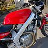 Honda Hawk -  (10)