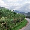 Landscape in Honduras.