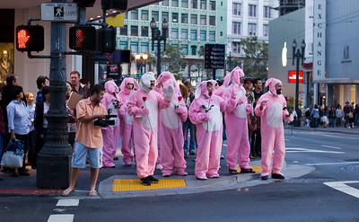 Pink Rabbit Suits  I'm not sure what this was all about, but these people were just waving and saying hello to people as they walked around San Francisco dressed in pink rabbit suits.