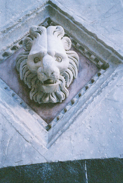 Bill developed quite a fondness for lions while in Italy.