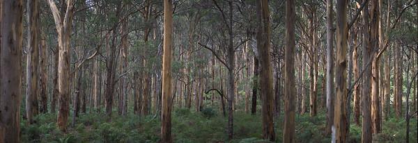 Leeuwin Naturaliste National Park