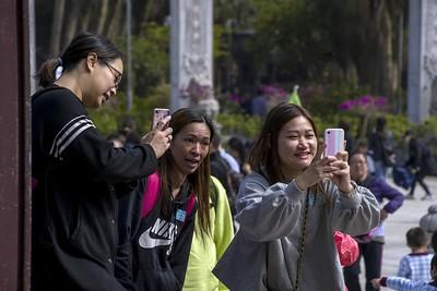 More bloody selfie-obsessed phone buffs!