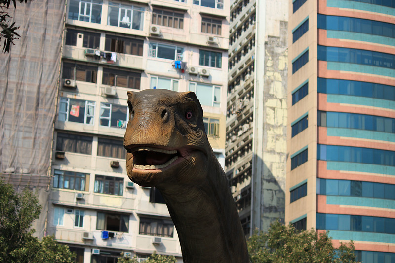 Dinosaur in the Middle of Kowloon, Hong Kong