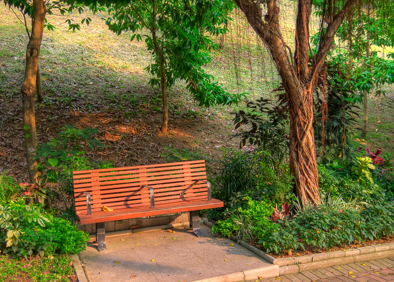 Bench in Shing Mun Valley Park.