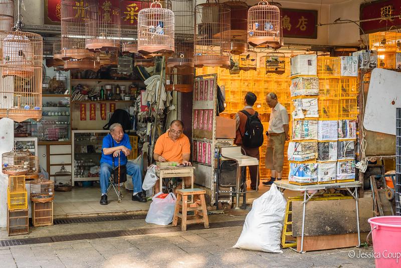 Bird Sellers