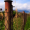 Rusted post from a fence along a looping trail near Sok Kwu Wan