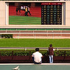 At the Sha Tin Racecourse.
