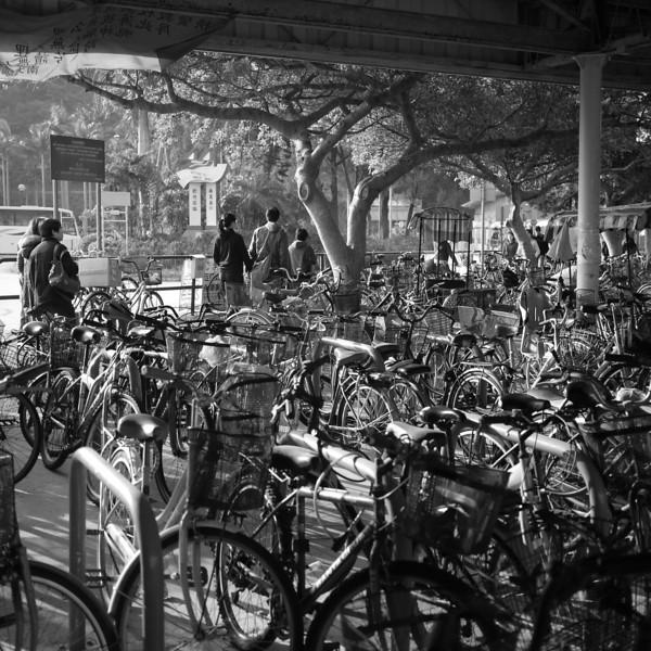 Mui Wo ferry bike sheds.