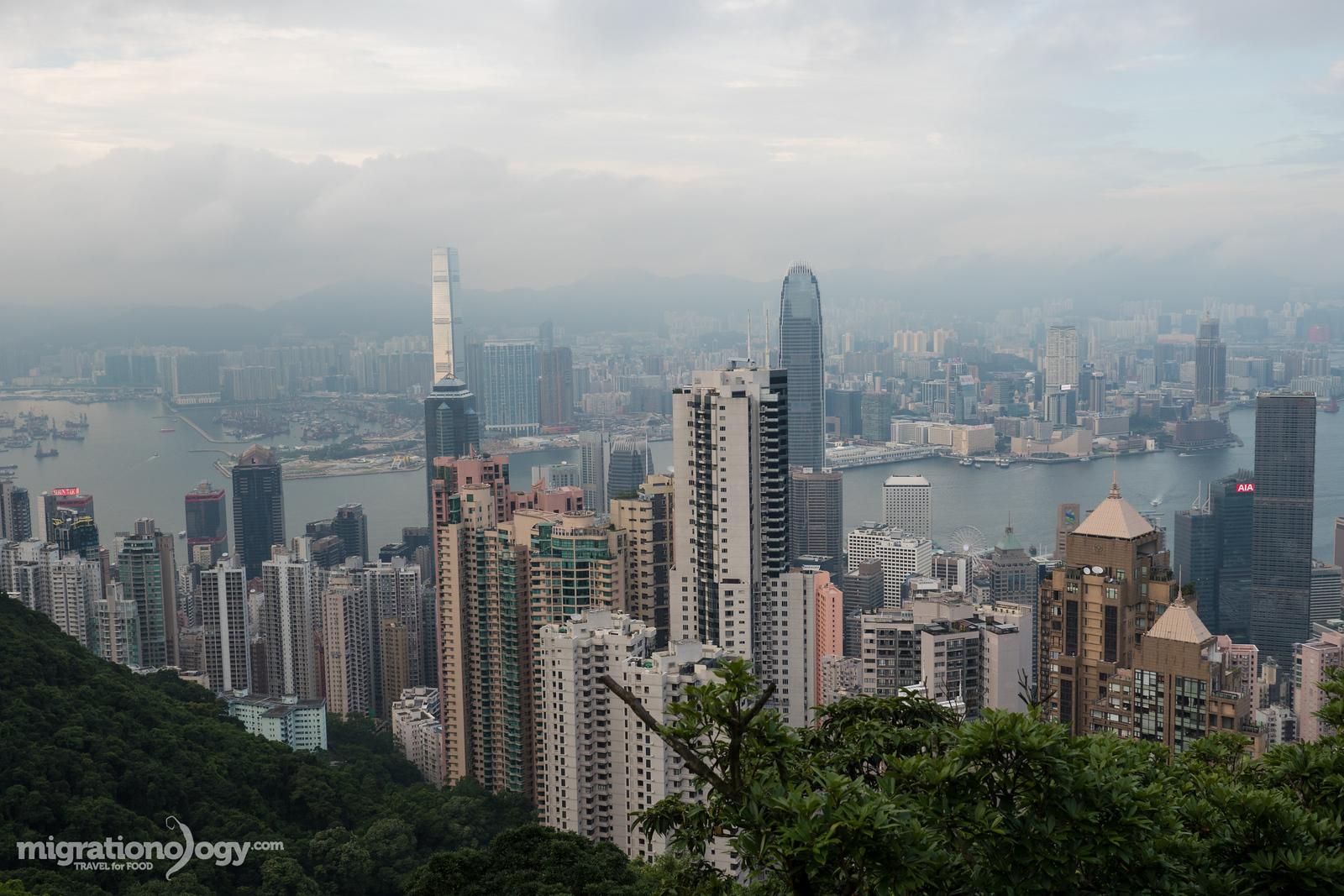 在香港要做的事情