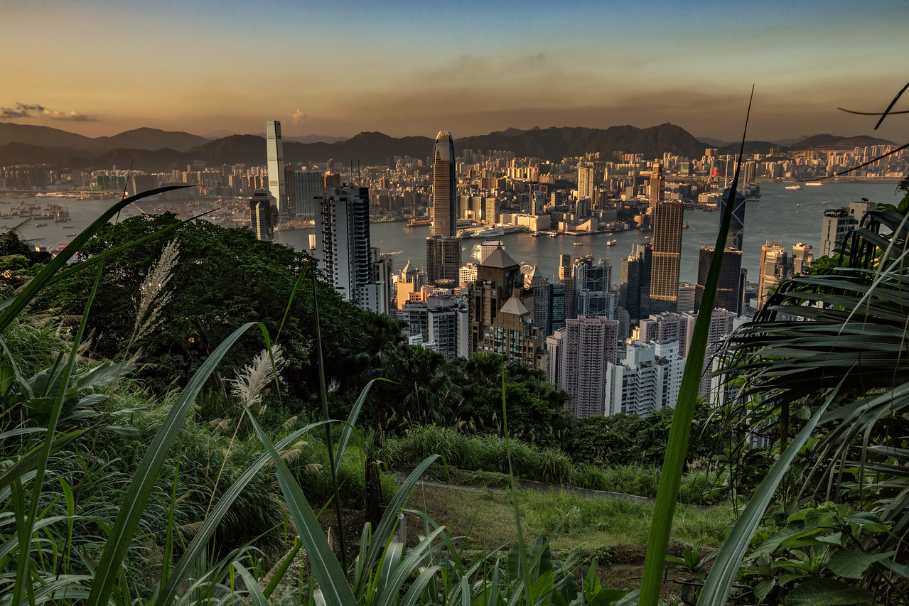 View of the Victoria Harbor while hiking in Hong Kong on Victoria Peak