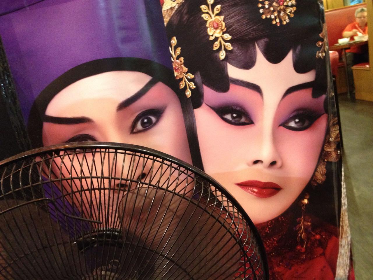 Opera Fan