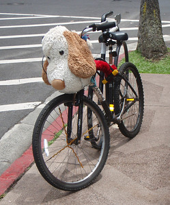 Bike with Large Stuffed Animal Locked to Rack