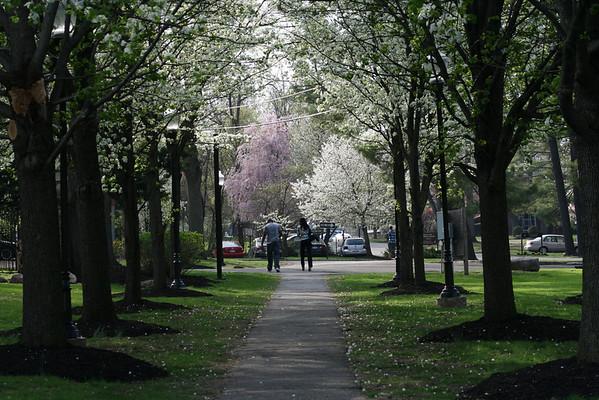 Spring is springing on campus