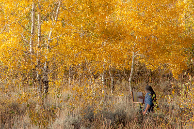 An artist paints Fall aspens across from Oxbow Bend in Grand Teton National Park..  This photo won Second Place in the People Category, Adult Advanced Division, Big Sky Country State Fair 2018, Bozeman, MT.