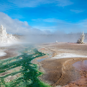 Whirligig Geyser and geyser runoff , Porcelain Basin, Norris Geyser Basin, Yellowstone National Park.  This photo appears in the Yellowstone 2019 Desk Calendar.