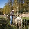 Dauwtrappen-Bank-Foto_Pierre_Pinkse-1231
