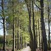 Dauwtrappen-Bank-Foto_Pierre_Pinkse-1226
