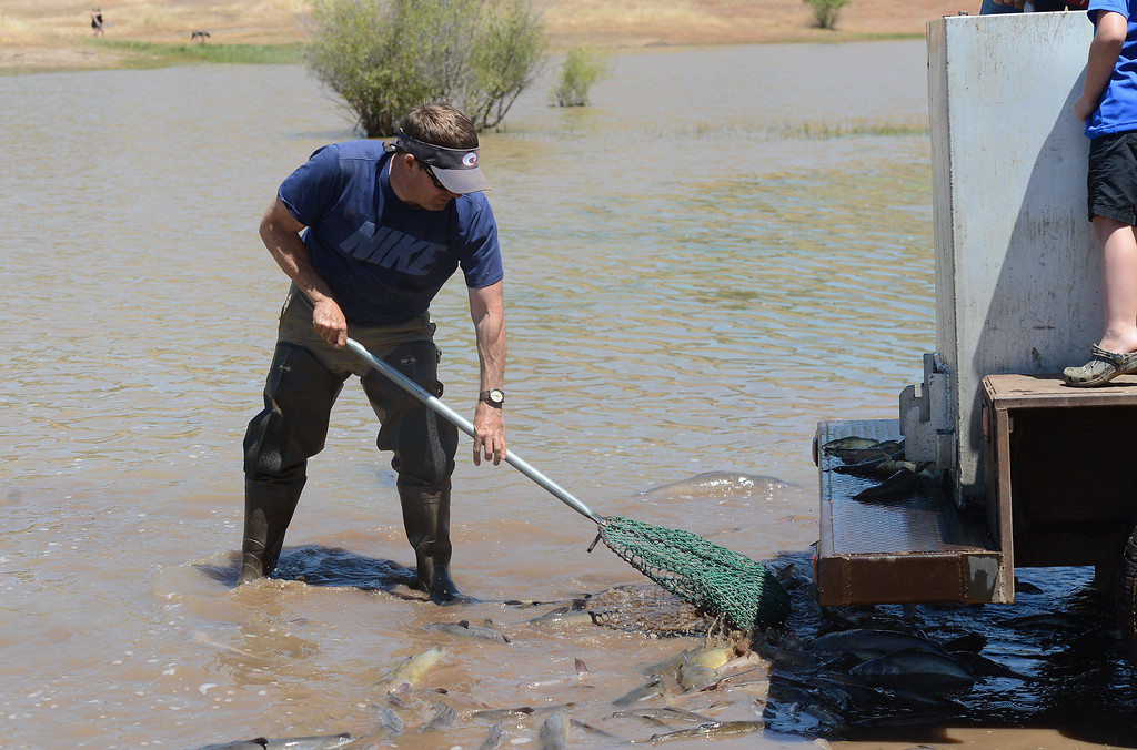 . Lucas Caldwell stocks Horseshoe Lake with catfish for Hooked on Fishing, May 18, 2018,  in Chico, California. (Carin Dorghalli -- Enterprise-Record)