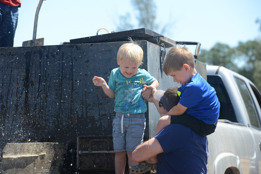 . Chris Giampaoli, Jett Bernedo and Lucas Caldwell squint their eyes as water flies up from catfish being poured into Horseshoe Lake, May 18, 2018,  in Chico, California. (Carin Dorghalli -- Enterprise-Record)