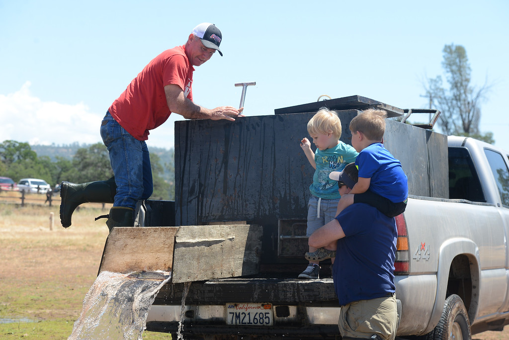 . Jett Bernedo, Lucas Cladwell, Lance Bundy and Chris Giampaoli watch as catfish are poured into Horseshoe Lake, May 18, 2018,  in Chico, California. (Carin Dorghalli -- Enterprise-Record)