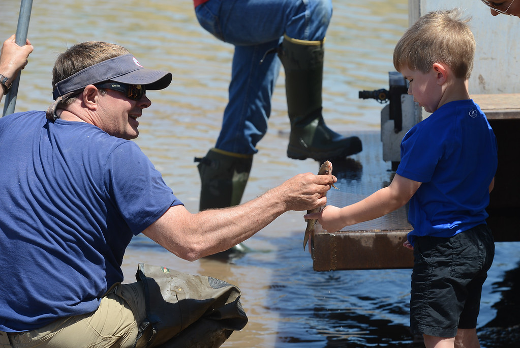 . Lucas Caldwell pulls a small catfish out of the water so Jett Bernedo can touch it, May 18, 2018,  in Chico, California. (Carin Dorghalli -- Enterprise-Record), May 17, 2018,  in Chico, California. (Carin Dorghalli -- Enterprise-Record)