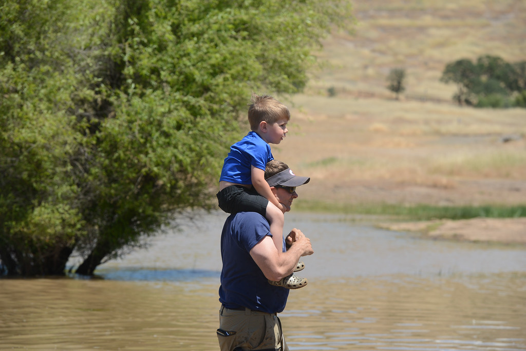 . Lucas Caldwell lets Jett Bernedo sit on his shoulders so he can have a good look at catfish being stocked into Horseshoe Lake for Hooked on Fishing, May 18, 2018,  in Chico, California. (Carin Dorghalli -- Enterprise-Record)