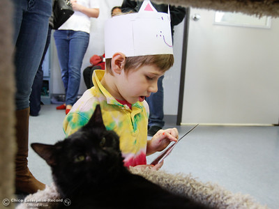 Hooker Oak kindergarten, Jackson Rassmusen reads to a cat who's been distracted March 22, 2016 at the Butte Humane Society's Cat Adoption Center in Chico, Calif. (Emily Bertolino -- Enterprise-Record)