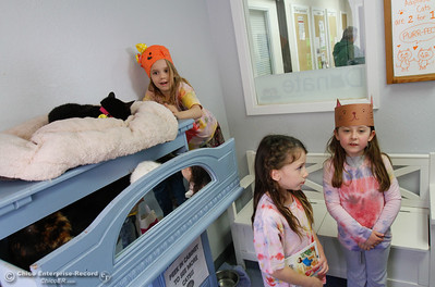 Hooker Oak kindergartens visit the  Butte Humane Society Cat Adoption Center to practice reading to cats March 22, 2016 in Chico, Calif. (Emily Bertolino -- Enterprise-Record)