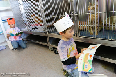 Hooker Oak kindergartens Tyden Shupe and Anna Diaz practice read to cats at the Butte Humane Society's Cat Adoption Center March 22, 2016 in Chico, Calif. (Emily Bertolino -- Enterprise-Record)