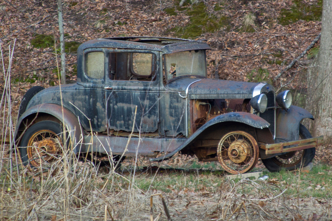 Found along Spout Springs Road near Shoals, Indiana, February 2013.
