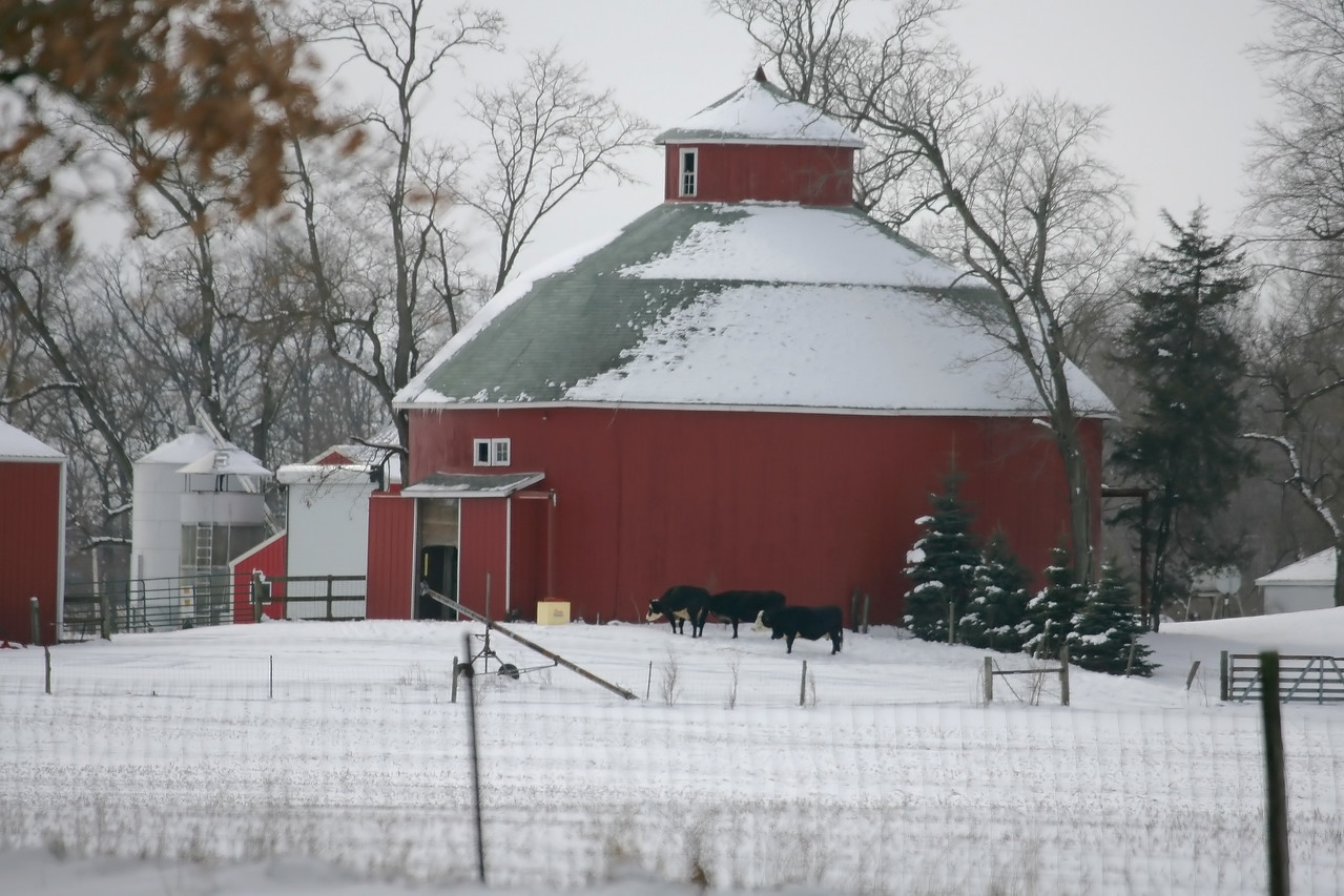 Roundbarn in White County, Indiana, 0.5 miles NE of the town of Buffulo.  Photographed February 2008.