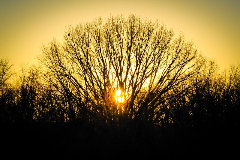Sunset in Vigo County