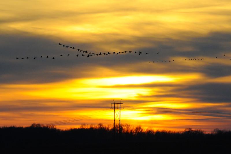 Sunrise over Vigo County