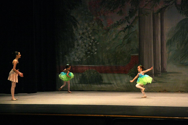 """Repertoire of Life"" performance, May 2009"