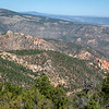 New Mexico's Gila National Forest