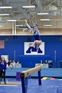 2019 Section 6AA Gymnastics Meet